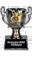 Кубок:  - Причина вручения: Победа в конкурсе `Картмастер 2010` в номинации `Лучшая карта для мультиплеера Heroes 5`
