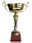 Кубок: Кубок победителя турнира Elimination Chamber - Причина вручения: